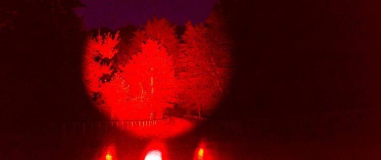 Al via il festival delle luci del Circolo Acli di Lioni